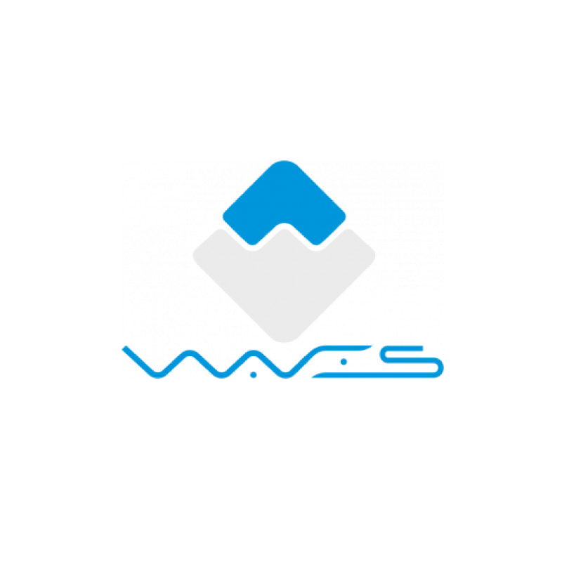 What is Waves blockchain? | WAVES